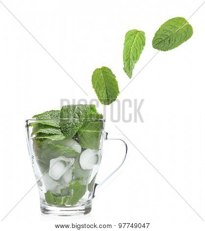 Mint leaves falling in glass cup isolated on white