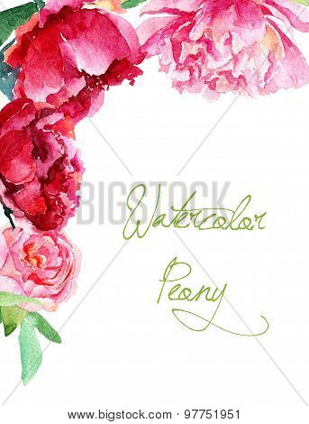 Invitation Card. Pink And Red Watercolor Peonies.