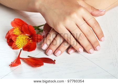 Woman hands with french manicure and flower on table close-up