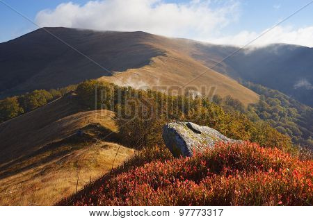Autumn landscape in the mountains. Stone and bush blueberries. Sunny day. Carpathians, Ukraine, Europe
