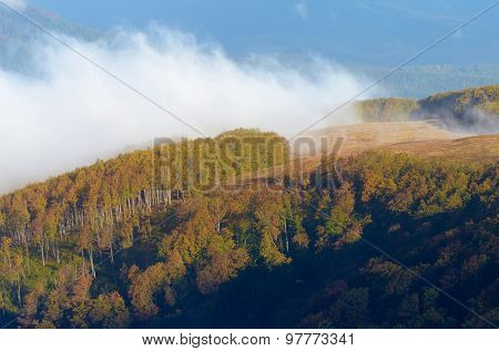 Autumn landscape in the mountains. Beech forest. Beautiful mist over the hill