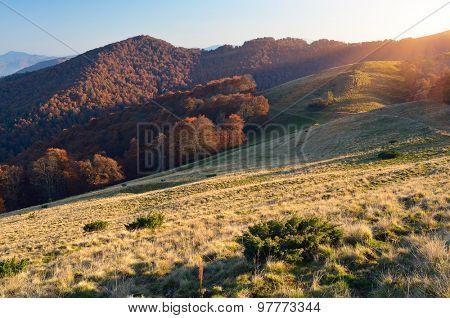 Autumn landscape. Sunny evening in the mountains. Carpathians, Ukraine, Europe