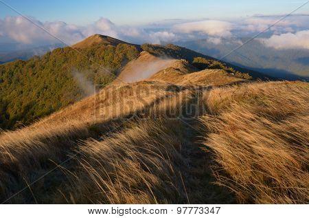 Mountain landscape. Road to the dry grass. Sunny autumn morning. Carpathians, Ukraine, Europe