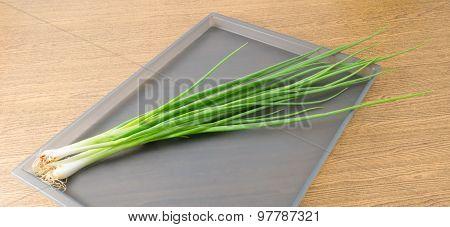 Fresh Spring Onion Or Scallion On A Tray