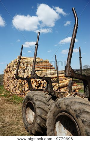 Renewable Resources Timber Industry