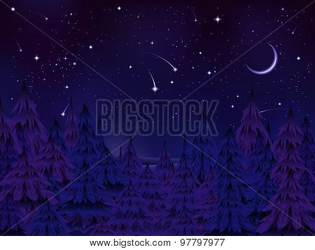 Mysterious Forest Night.eps