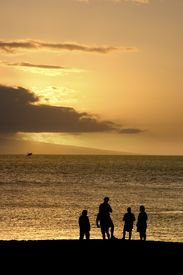 foto of family vacations  - family watching a breaching whale off the beach during sunset - JPG