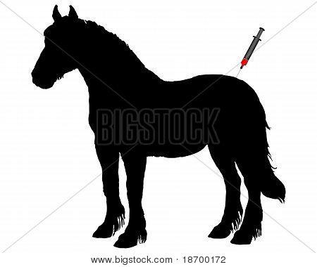 Immunization For Horses