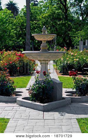 Fonte no meio do jardim de rosas no centro de Sacramento na Califórnia