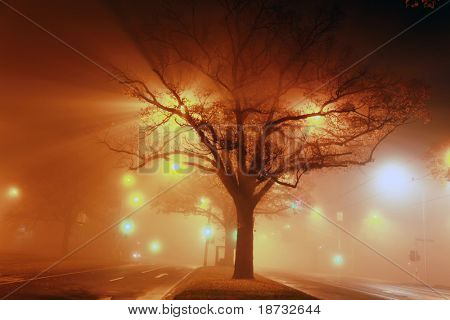 Street light on the fog