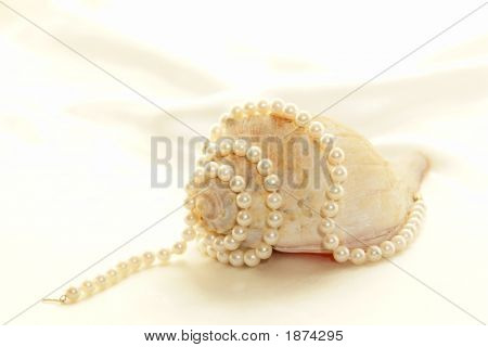Pearls With Conch