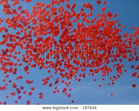 Orange Balloons 3