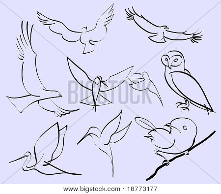 vector illustration of assorted abstract birds