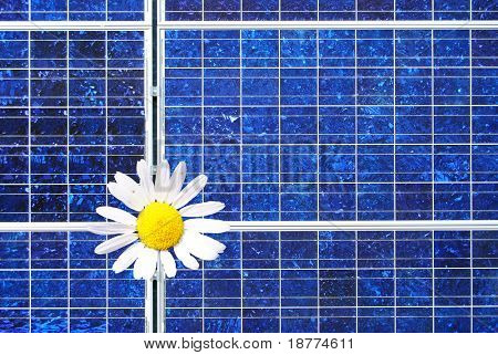 Marguerite as a sun symbol on a solar panel