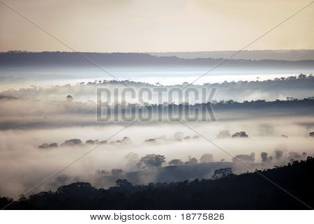 Early morning mist covering the ridges and valleys of a tropical rain forest in Brazil