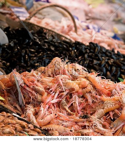 A display of fresh langoustines for sale at a French fish market