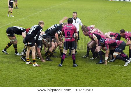 LONDON - MAY 1: Referee R Poite watches the scrum being formed. London Wasps v Cardiff Blues, semi finals of the Amlin Challenge Cup