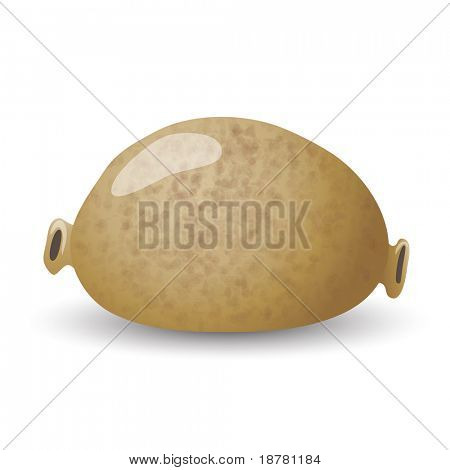 A traditional Scottish haggis isolated on white. EPS10 vector format.
