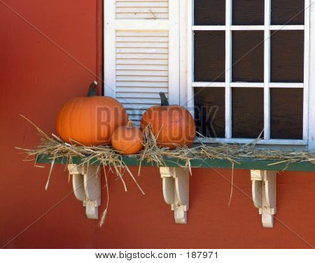 Three Pumpkins On A Shelf