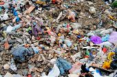 picture of municipal  - Huge pile of municipal waste on a disposal site - JPG