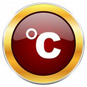 Celsius red web icon with golden border isolated on white background. Round glossy button. poster