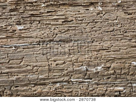 Wooden Beam With Woodworm