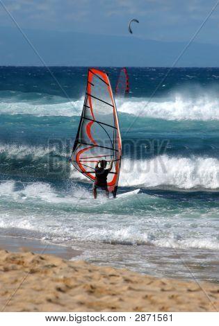 Avid Sailboarder