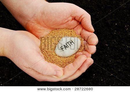 Sembrando Semillas de fe