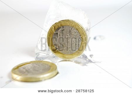 Frozen Euro Coins
