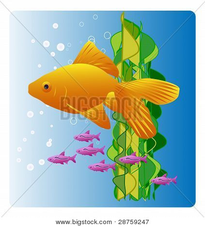 Bright yellow goldfish and tiny purple fish friends
