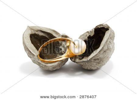 Golden Ring In Nutshell