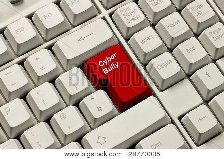 Cyber-Schläger