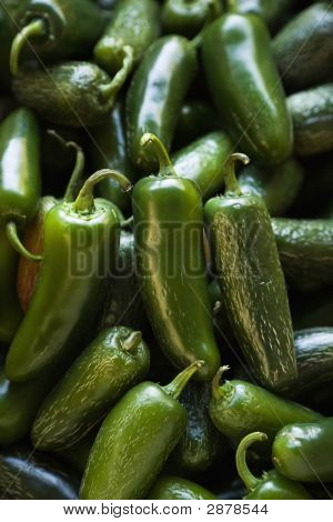 Fresh Jalapeno Peppers.