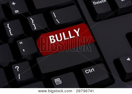 Bullying On The Internet