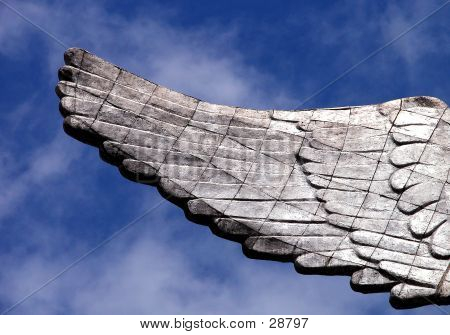 Wing Of The Angel