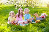 Family Picnic In Spring Park. Kids Eating Outdoors poster