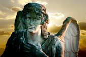 image of forlorn  - detail of angel statue on sunset background - JPG