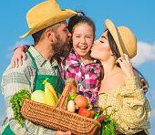 Family Farmers Hug Kiss Kid Hold Basket Fall Harvest. Family Gardener Basket Harvest Blue Sky Backgr poster