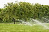 image of sprinkler  - The sprinkler system is watering the lawn - JPG