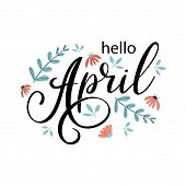 Hello April. Handwritten Lettering With Chamomile Flowers. Season Vector As Poster, Postcard, Greeti poster