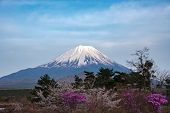 Mount Fuji Or Mt. Fuji, The World Heritage, View In Lake Shoji ( Shojiko ). Fuji Five Lake Region, M poster