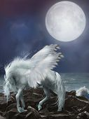foto of pegasus  - white pegasus in the stones with waves - JPG
