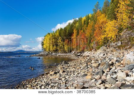 Coast Of The White Sea, Autumn, Russia