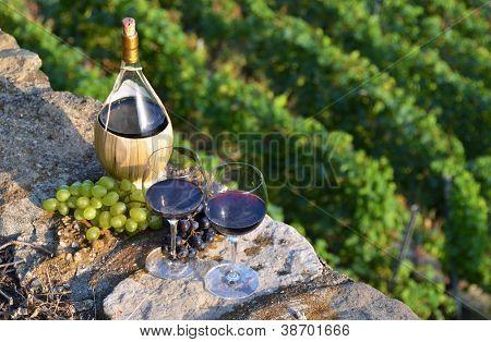 Paar Weingläser und Weintraube. Lavaux Region, Schweiz