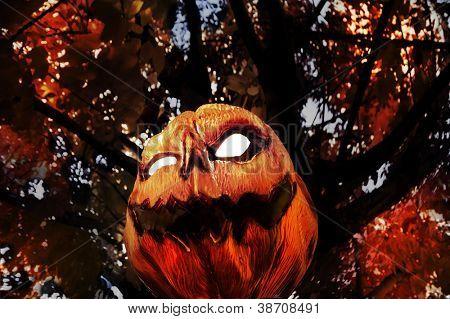 Evil Pumpkin - Jack O Lantern hanging in Tree