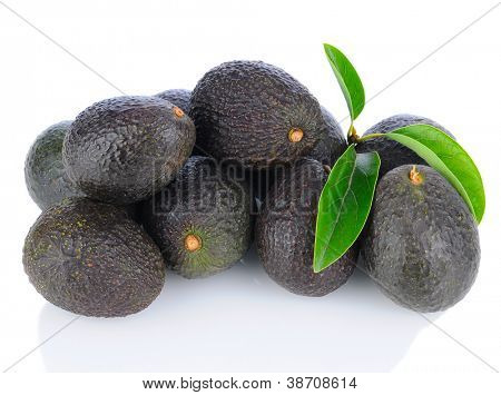 A pile of Hass Avocados with leaves. Horizontal format on a white background with reflection.
