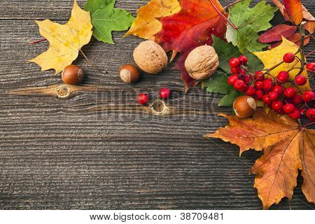 Autumn Leaves and nut over wooden texture background with copy space