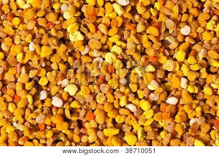 Texture Of Colorful Pollen Collected By The Bees