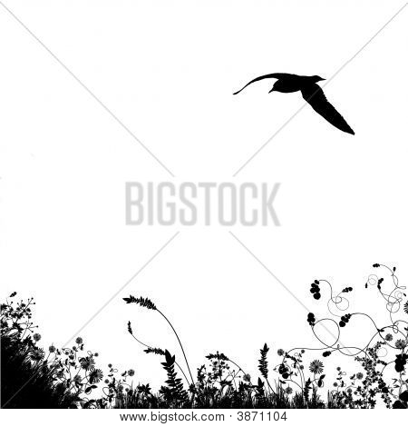 Black Bird Silhouette