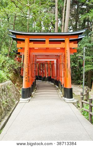 Famous shinto shrine of Fushimi Inari Taisha near Kyoto includes around 1300 orange torii gates, Japan